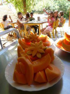 repas-melon-rosace-01