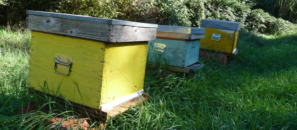 ruches pour bandeau 02